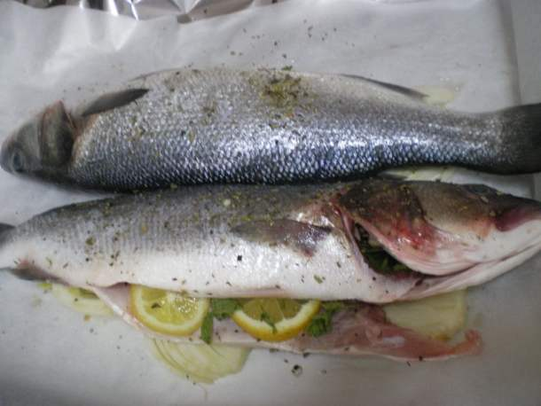 Lavraki sea bass image