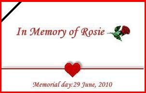 In Memory of Rosie