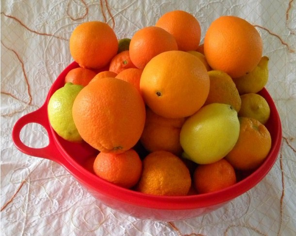 Citrus Fruit image