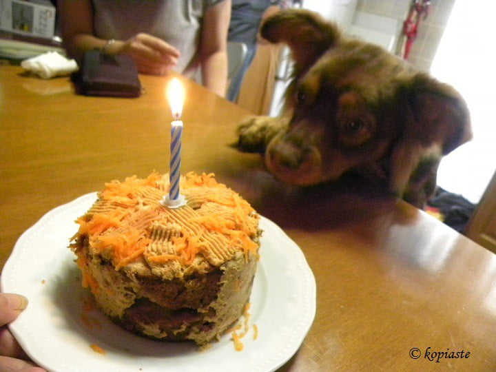 Carrot Cake For Lactose Intolerant