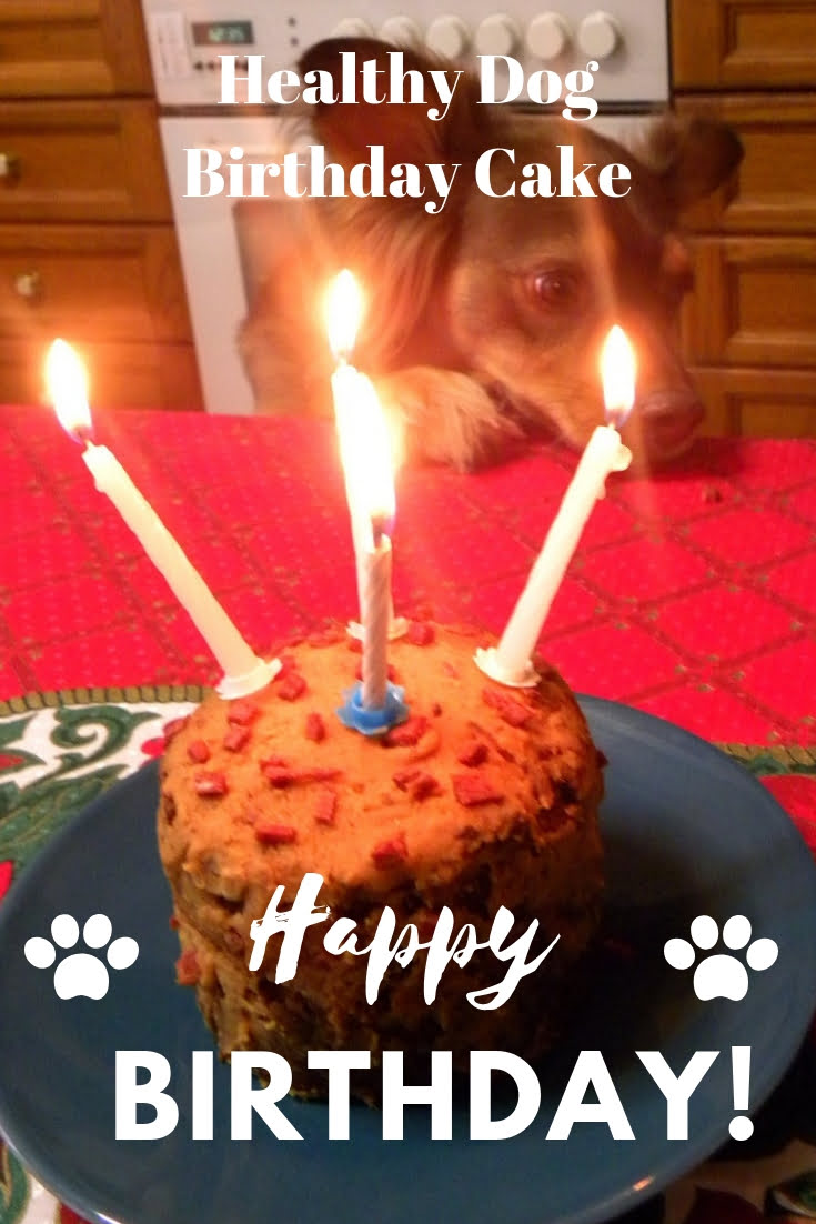 Cuisine Greek Category Dog Food Happy Birthday Cake Image