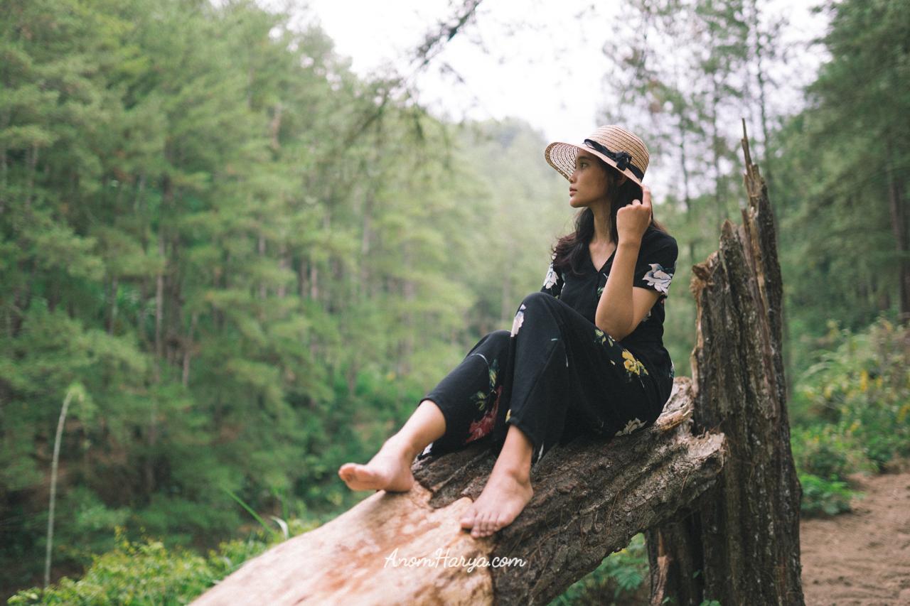 7 Tempat Wisata Di Blitar Yang Bagus Dan Populer 2019 Koran Id