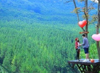 Tempat Wisata Alam di Lembang yang Populer