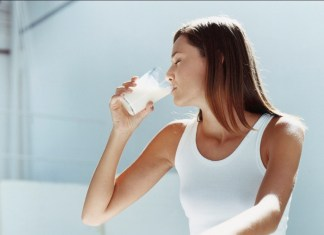 Susu Penggemuk Dewasa