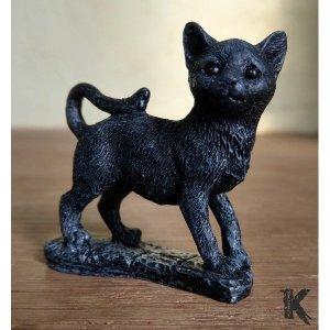 Chat noir porte-bonheur le curieux
