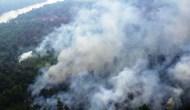 Permalink to Pelaku Pembakaran Lahan di Sumsel Telah Ditangkap