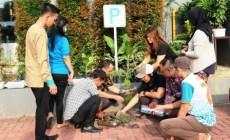Permalink to The 1O1 Hotel Manfaatkan Botol Plastik Bekas Untuk Menanam Tanaman