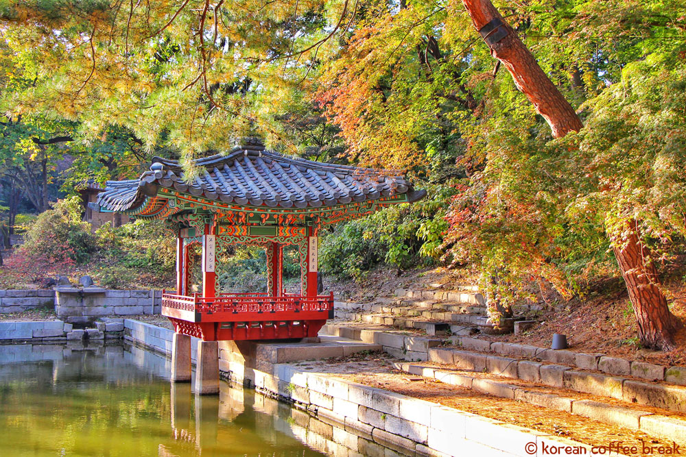 Changdeokgung Palace & Secret Garden (창덕궁과 후원) - SEOUL
