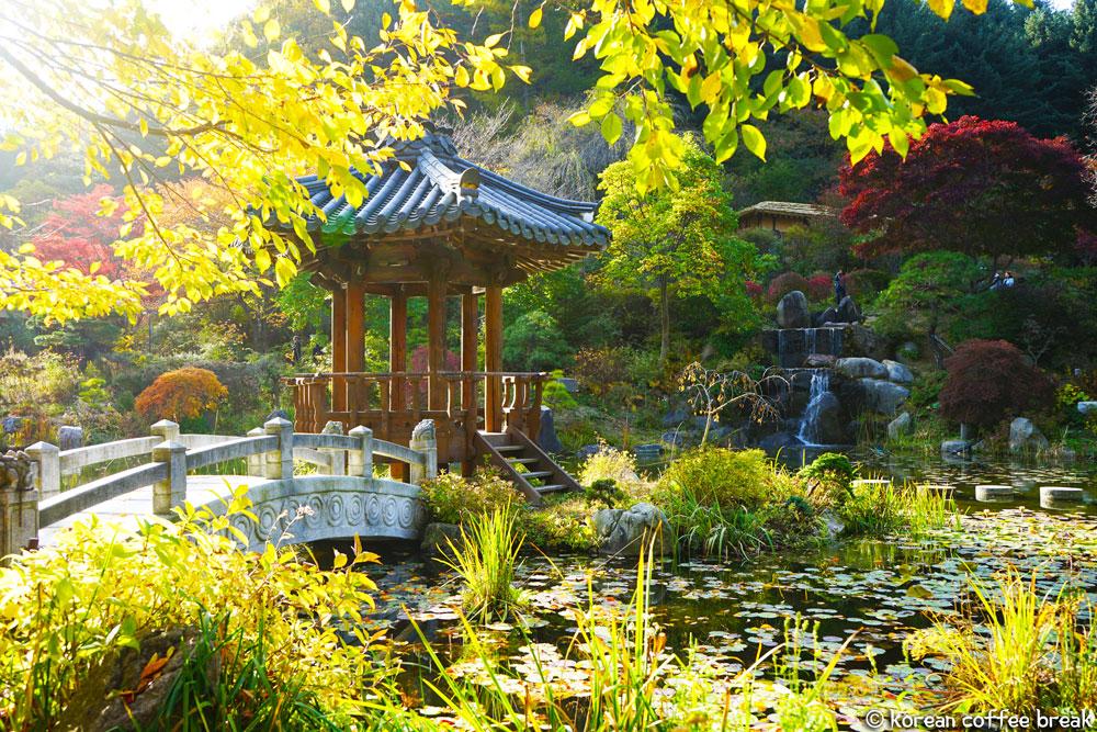 Garden of Morning calm  (아침고요수목원)