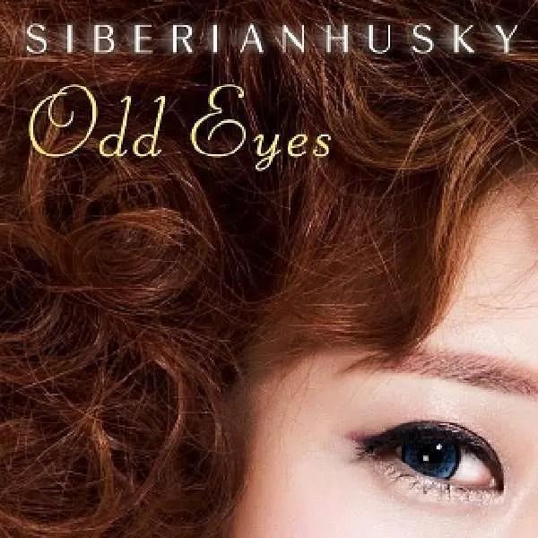 siberian husky eyes