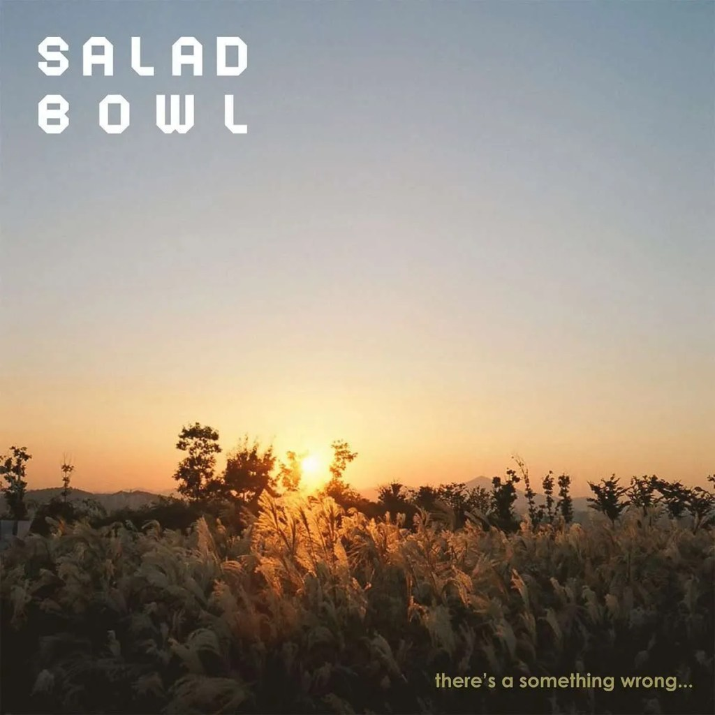 salad bowl there's a something wrong