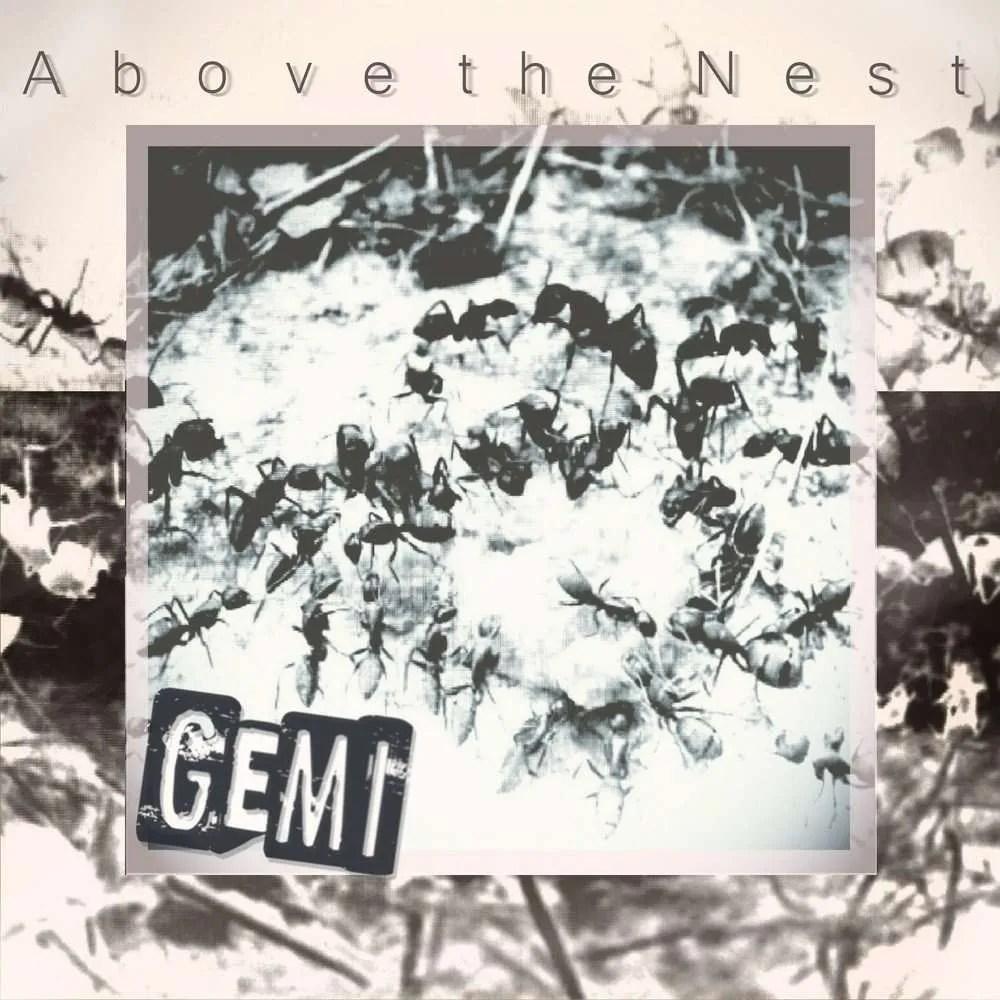 gemi-above-the-nest