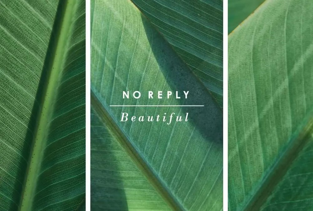 No Reply : Beautiful