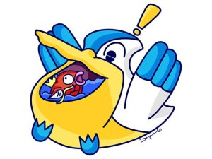 Pelipper Pokemon