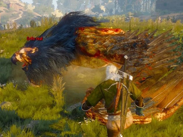 Grifo Real The Witcher 3