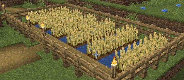 Cómo hacer un Huerto en Minecraft