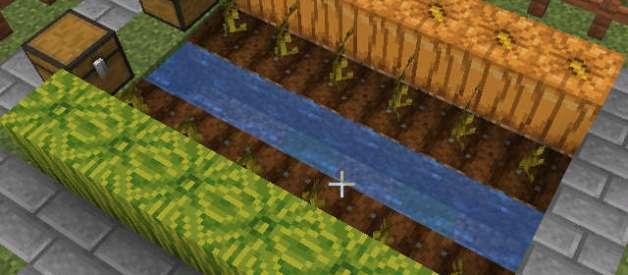 Cultivas Cabalazas y Sandías en Minecraft