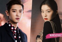 Chanyeol Irene Prada