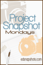 Project Snapshot Week 1 Logo | Everyday Snapshots