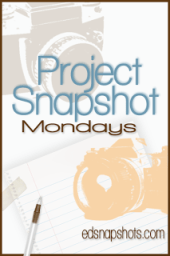 Project Snapshot Week 3 Logo | Everyday Snapshots