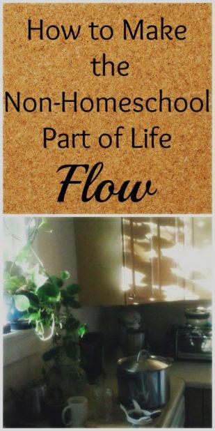 Non homeschool flow