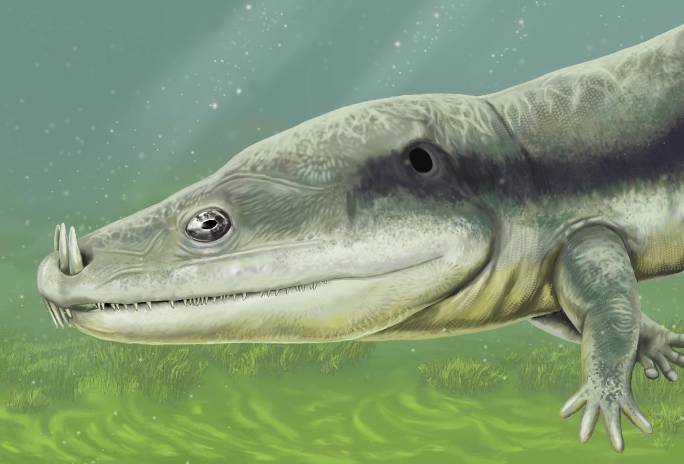 The Marine Reptile Timeline Koryos Writes