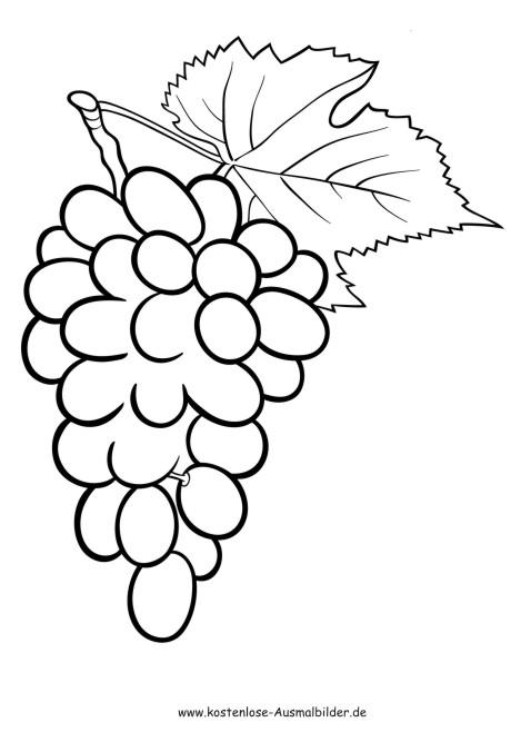 Ausmalbilder Trauben Lebensmittel Zum Ausmalen