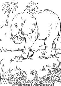Ausmalbilder Elefant Im Dschungel 1 Tiere Zum Ausmalen