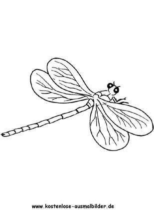 Ausmalbilder Libelle Tiere Zum Ausmalen Malvorlagen