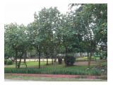 Taman Depan Rumah Kost