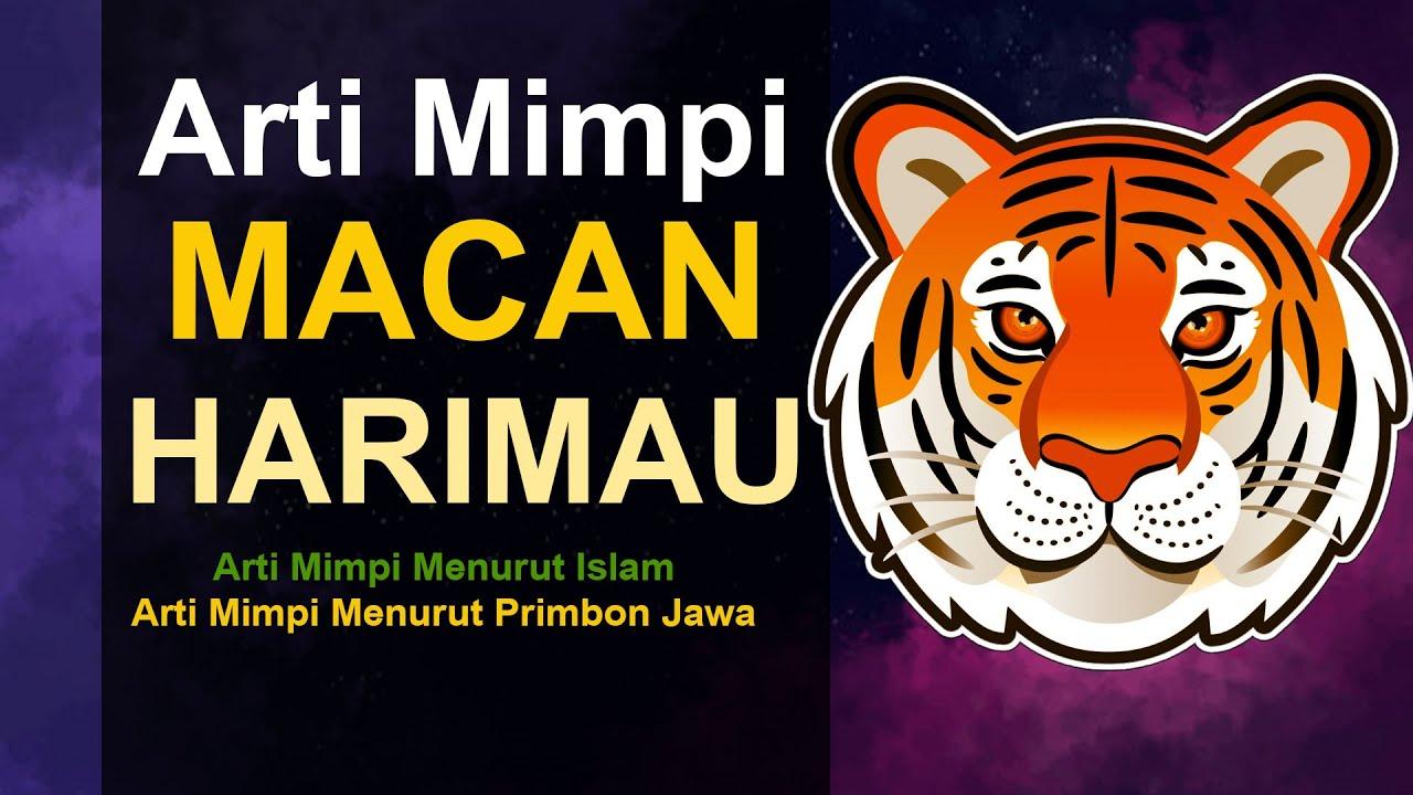 Tafsir Mimpi Harimau Dalam Togel 2D, 3D Dan 4D