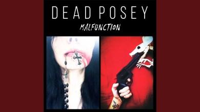 Photo of Dead Posey – Parasite lyrics