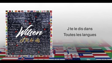 Photo of Wilson – J'te Le Dis lyrics
