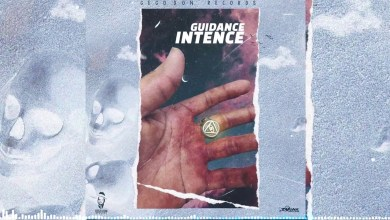 Photo of Intence – Guidance Lyrics