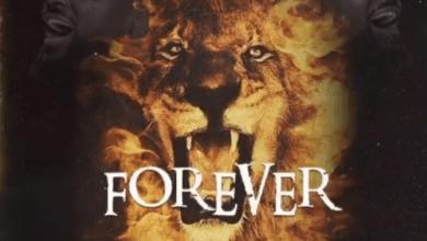 Photo of Samini – Forever