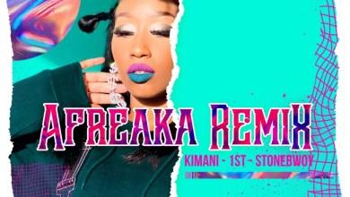 Photo of Victoria Kimani x FKI 1st Ft Stonebwoy – Afreaka (Remix) Lyrics