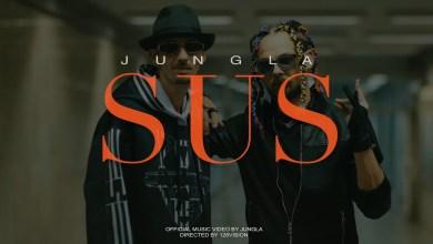 Photo of Jungla by Chimie & Domnul Udo – SUS Versuri (Lyrics)