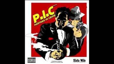 Photo of Shatta Wale – (Partner In Crime) P.I.C.
