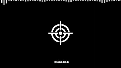 Photo of Chris Webby – Triggered Lyrics