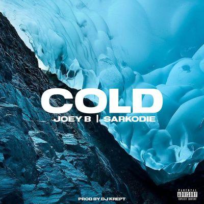 Joey B Ft Sarkodie – Cold (Prod By DJ Krept)