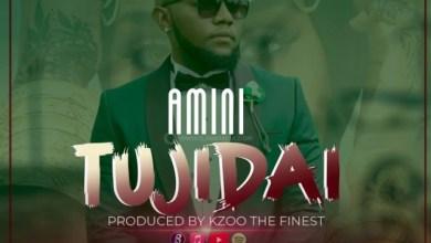 Photo of Amini – Tujidai