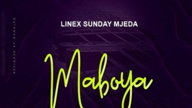 Photo of Linex – Maboya