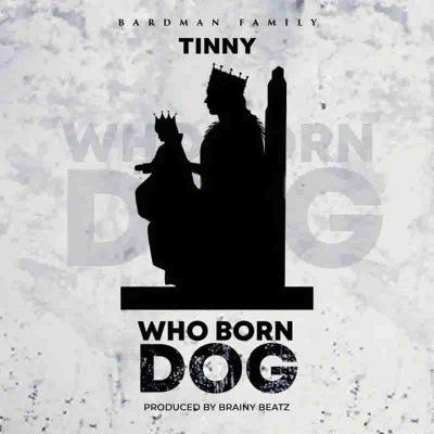 Tinny - Who Born Dog (Yaa Pono Diss)