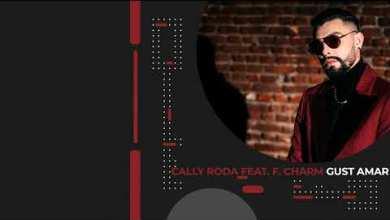 Photo of Cally Roda Ft F.Charm – Gust amar Versuri (Lyrics)