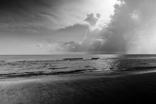 black and white beach photo