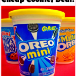 $0.25 MONEY MAKER Nabisco Go-Snaks At Target And Walmart!!!