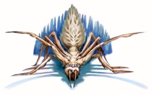 Dungeons and Dragons Spider