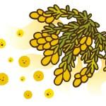 花粉の飛散始まりです