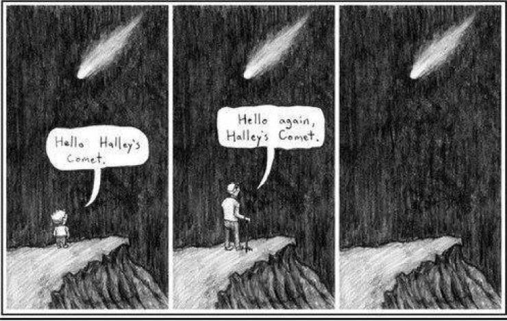 halley2
