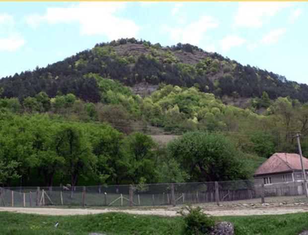 Borberek (1)